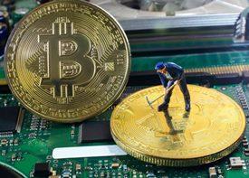 Какой доход может принести майнинг, и какой криптовалюте отдать предпочтение?