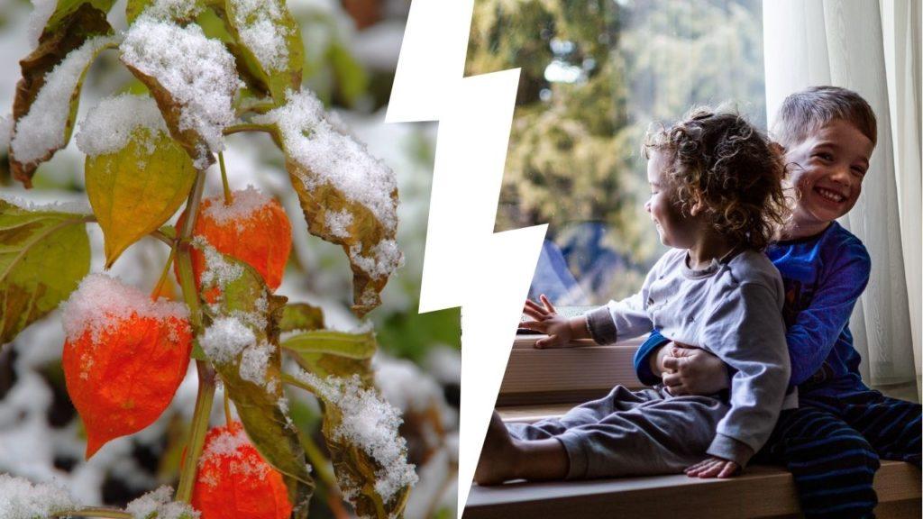 Когда ждать 1-й снег в сентябре 2021 года — точные прогнозы от синоптиков