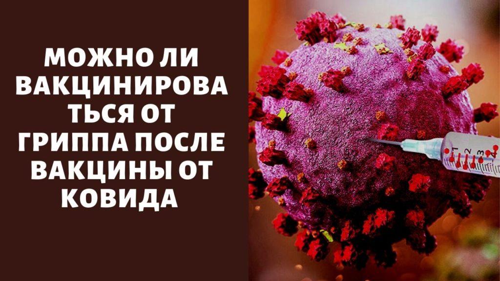 «Выждать 30 дней»: можно ли вакцинироваться от гриппа после вакцины от Ковида — назван промежуток между прививками
